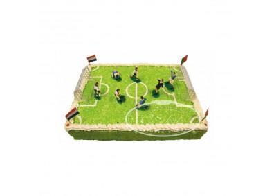 Tort sportowy Ts06